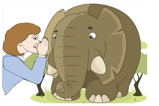 talking-to-elephants.png